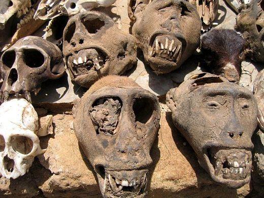 Akodessewa pasar jimat santet voodoo terbesar di dunia