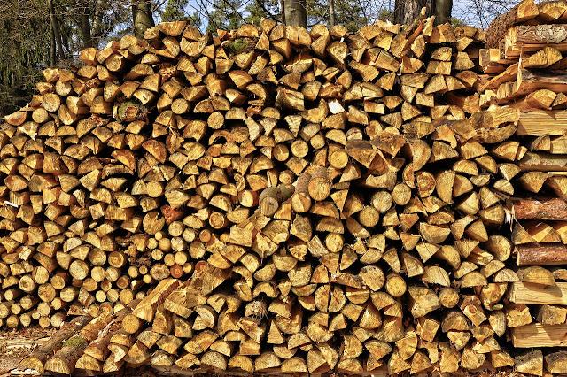 Madeiras - Controle da Origem dos Produtos Florestais no Código Florestal