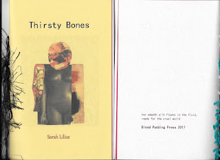 "cover of book ""Thirsty Bones"""