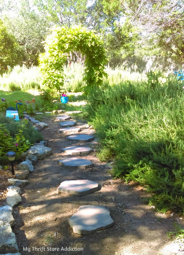 Secret Garden Herbs organic rosemary plants