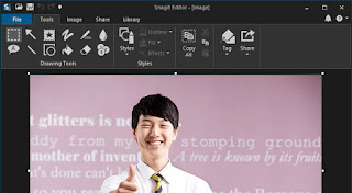 Snagit is a tremendous screenshot capture editor