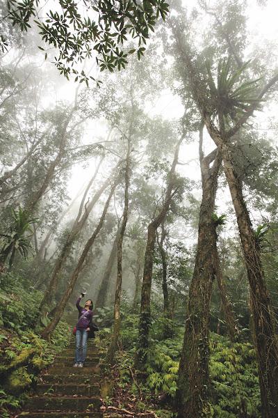 谷漢森林步道1