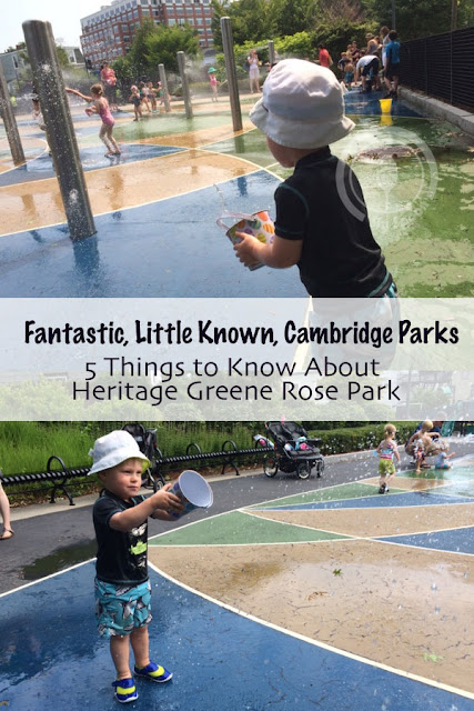 Fantastic, Little Known, Cambridge Parks - 5 Things to Know About Heritage Rose Park