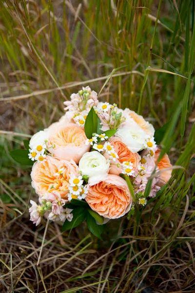 Alternative To Rose Garden: Life Of A Vintage Lover: Seasonal Peonies Alternatives