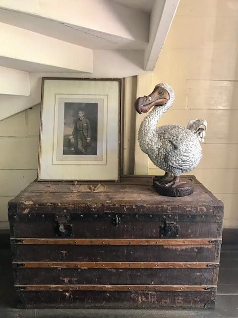 Maison Eureka, Mauritius, dodo