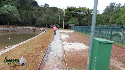 Execução do caminho em volta do lago sendo caminho com o piso com concreto desempenado junto com ao muro de pedra rústica nas bordas do lago.
