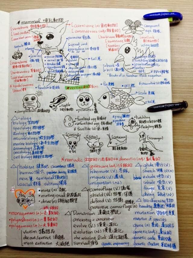 《喬的人生會談室》- Joseph Chen's Talking Room: [語言] 英文學習之動物相關主題式單字整理