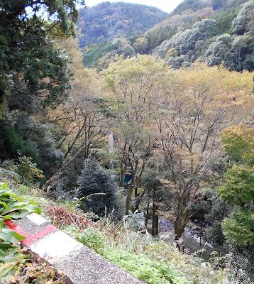 国道414号側から見下ろした浄蓮の滝