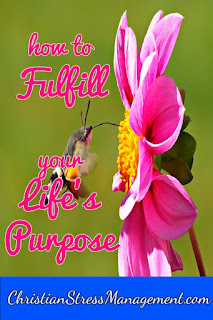 How to know and fulfill your life purpose