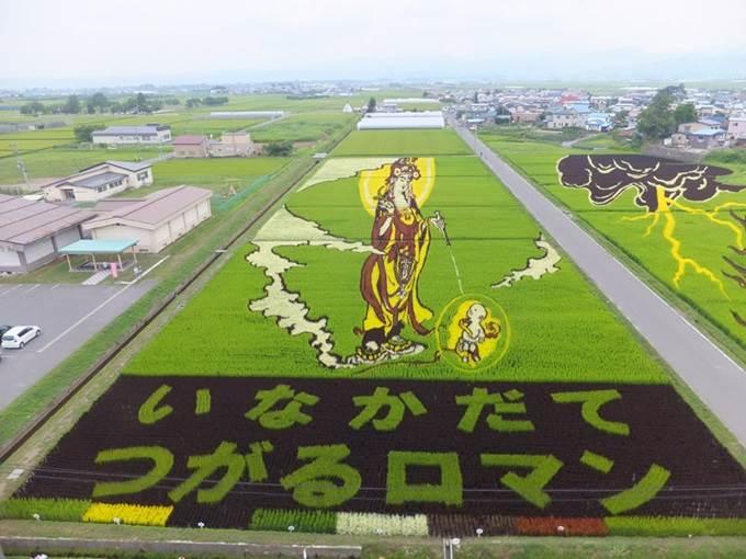 tanbo art japanese paddy field