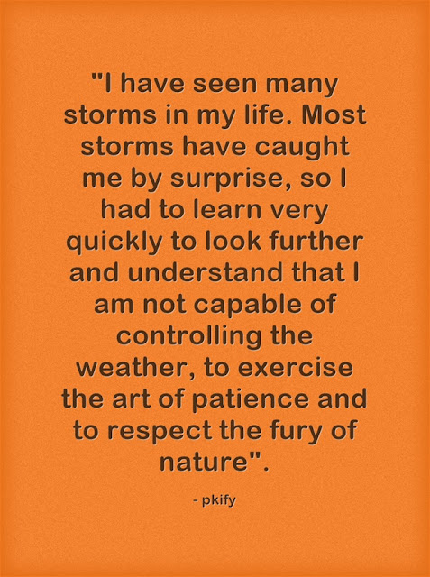 I have Seen Many Storms in My Life Nature Quotes