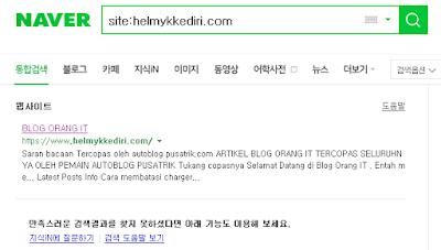 korea google tidak populer