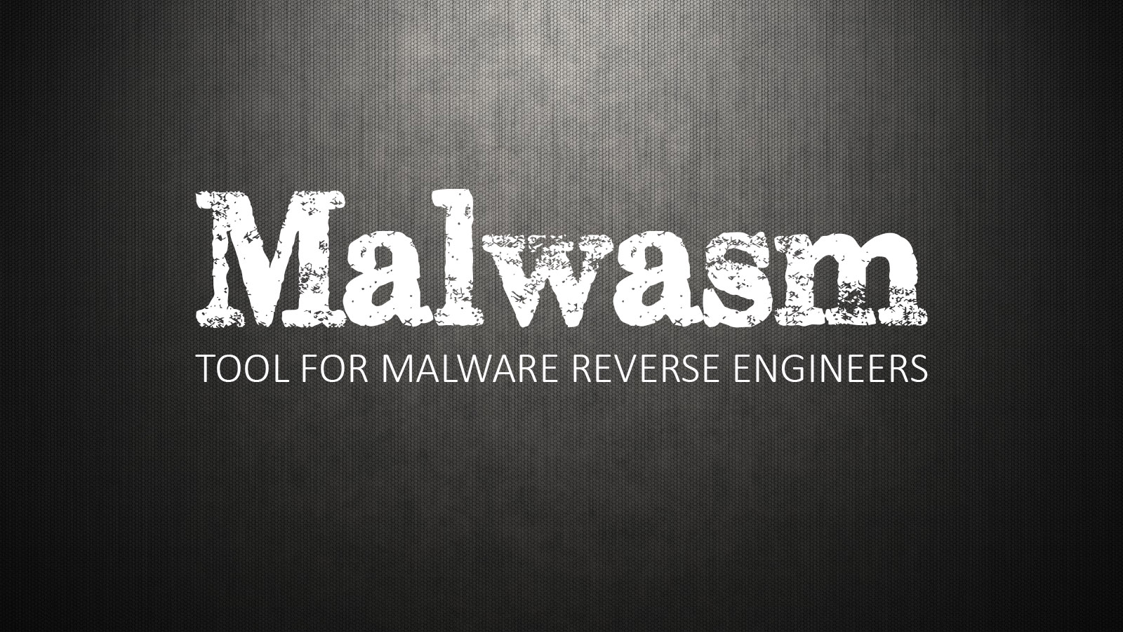 Malwasm - Tool For Malware Reverse Engineers