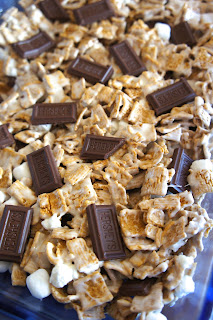 S'Mores Bars: Savory Sweet and Satisfying