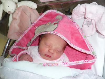 naissance chipette