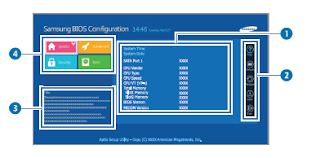 The BIOS screen