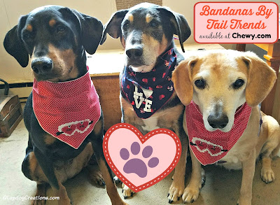 valentines day dog rescue bandanas puppy