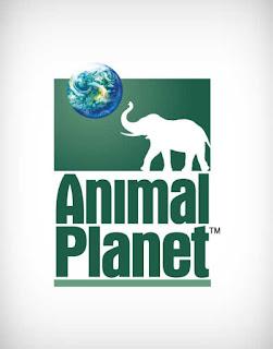 animal planet tv vector logo, animal planet tv logo vector, animal planet tv logo, animal planet tv, animal planet tv logo ai, animal planet tv logo eps, animal planet tv logo png, animal planet tv logo svg