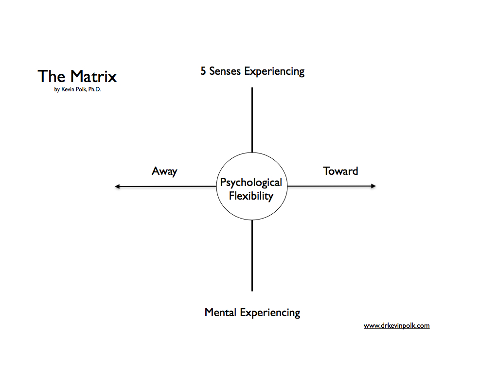 Influencing With The Act Matrix