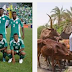 FULANI HERDSMEN TO PLAY MATCH AGAINST SUPPER EAGLE TEAM
