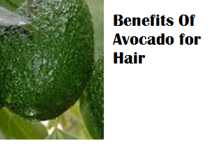 Amazing health benefits of Avocado Butter Fruit Makhanphal - Benefits Of Avocado for Hair