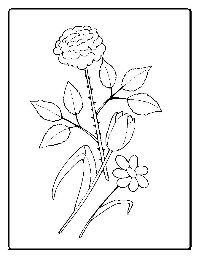 Coloring pages worksheets simple flower coloring pages for Easy flower coloring pages