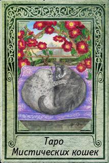 Галерея Таро Мистических кошек