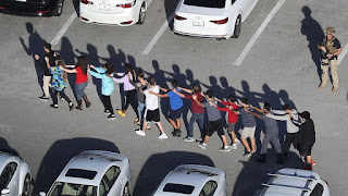 Guns, Internet, isolation could spur uptick in US mass shootings