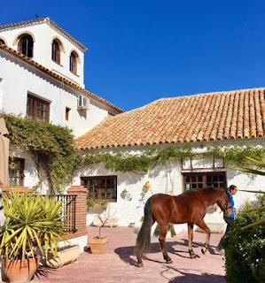 Spain, Espanja, ratsastusloma, riding holiday, Cortijo Uribe, riitta reissaa, Horsexplore
