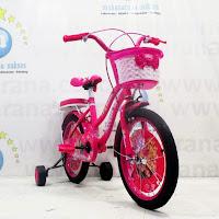 16 previa sepeda anak perempuan
