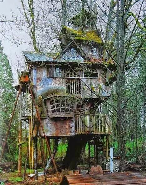Amazing Tree Houses - My World