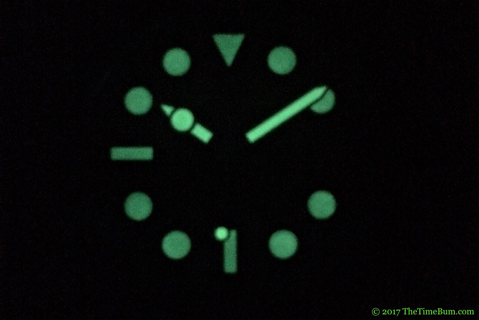 Spinnaker Cahill 38mm lume