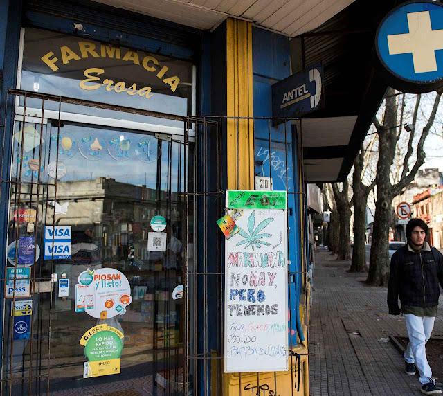 Farmacêuticos uruguaios na mira dos narcotraficantes.