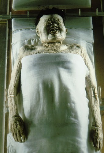 Self-Mummification mummified body