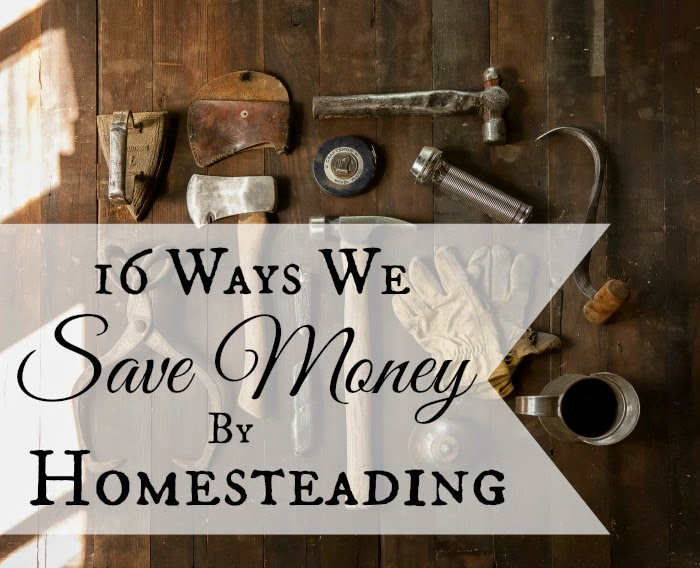 http://areturntosimplicity.com/16-ways-we-save-money-by-homesteading/