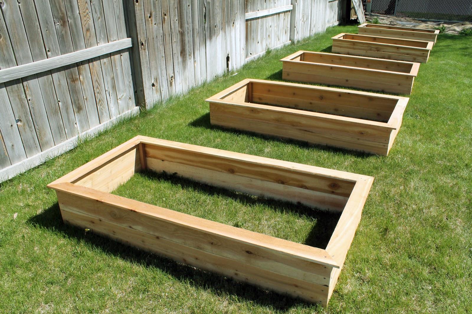 Our DIY Raised Garden Beds  Chris Loves Julia