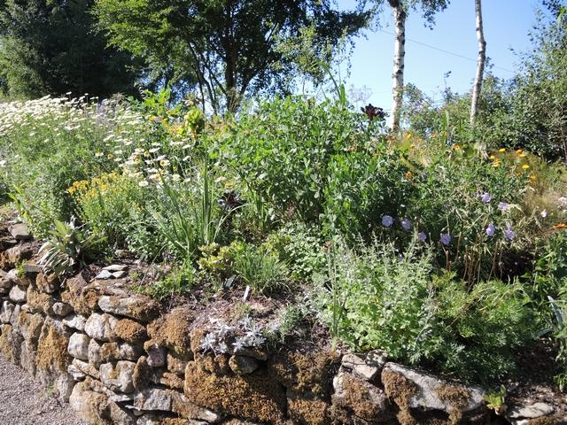 Terrassenbeet mit Steinmauer