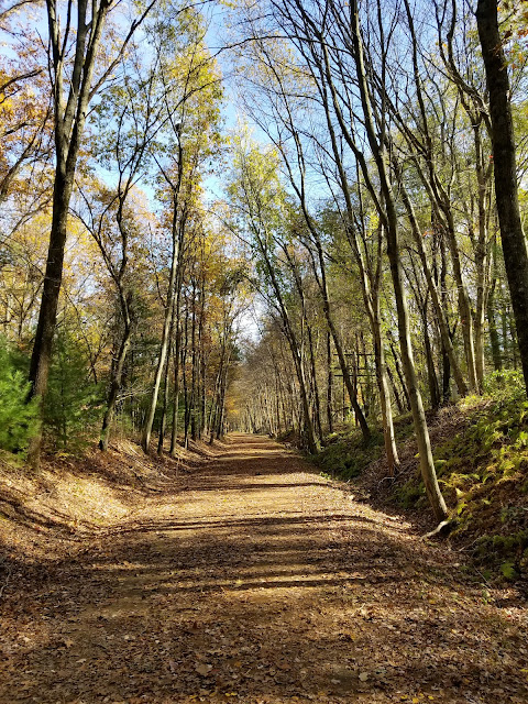 Vernon rail trail
