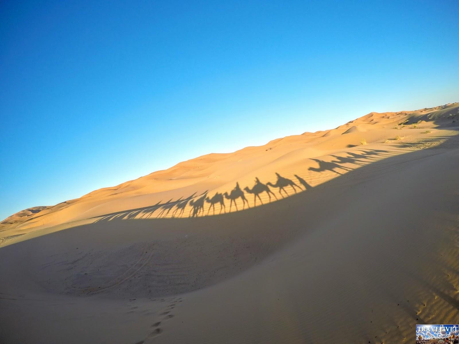 Maroc Merzouga Désert Sahara
