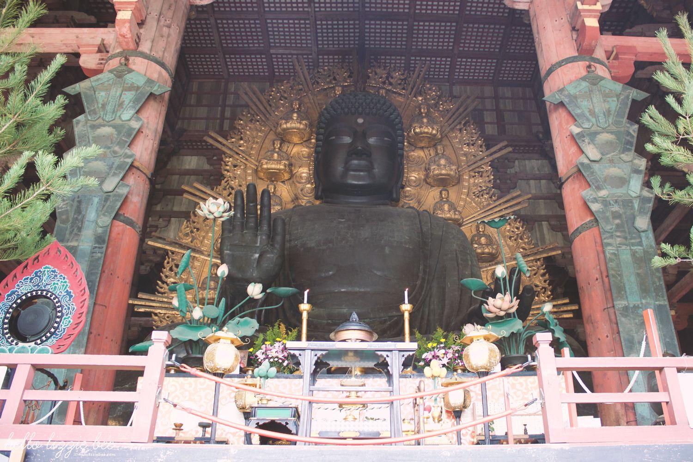 Daibutsu, buddha statue, japan