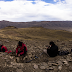 NACIONAL: Descubren dinosaurio semiarticulado en la Región de Magallanes