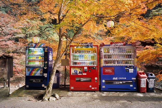 A Crazy Photo Collection of Japan