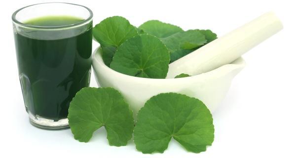 Sử dụng rau giúp chống lão hóa, trắng da, trị nám khi mùa hè