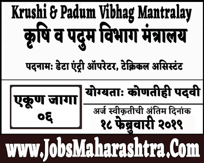 Krushi & Padum Vibhag Mantralay Bharti 2019