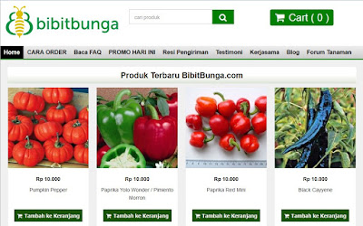 Berkebun bersama Bibitbunga.com