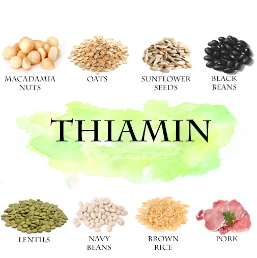 In What Foods Can We Thiamin