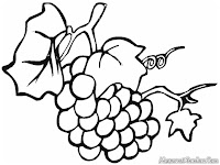 Grape Coloring Pages