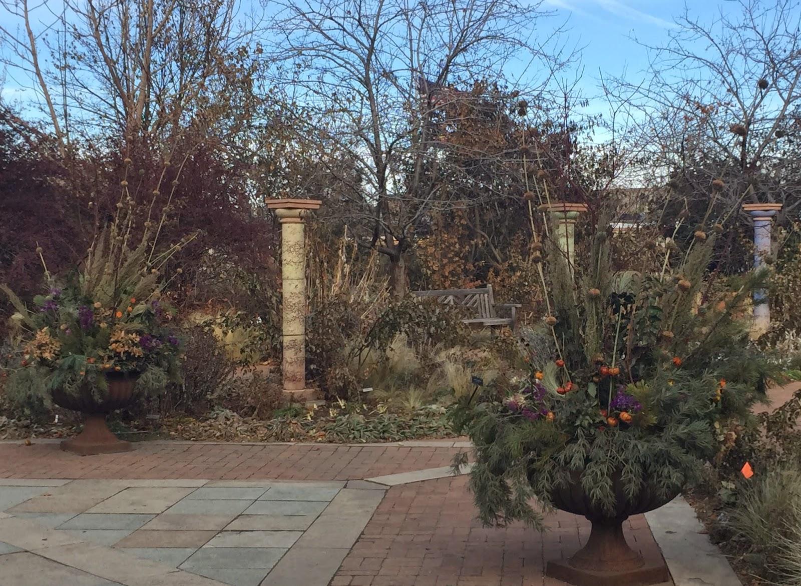 Denver Botanic Gardens Christmas Lights