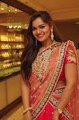 Aswhini latest sizzling half saree pics-thumbnail-20