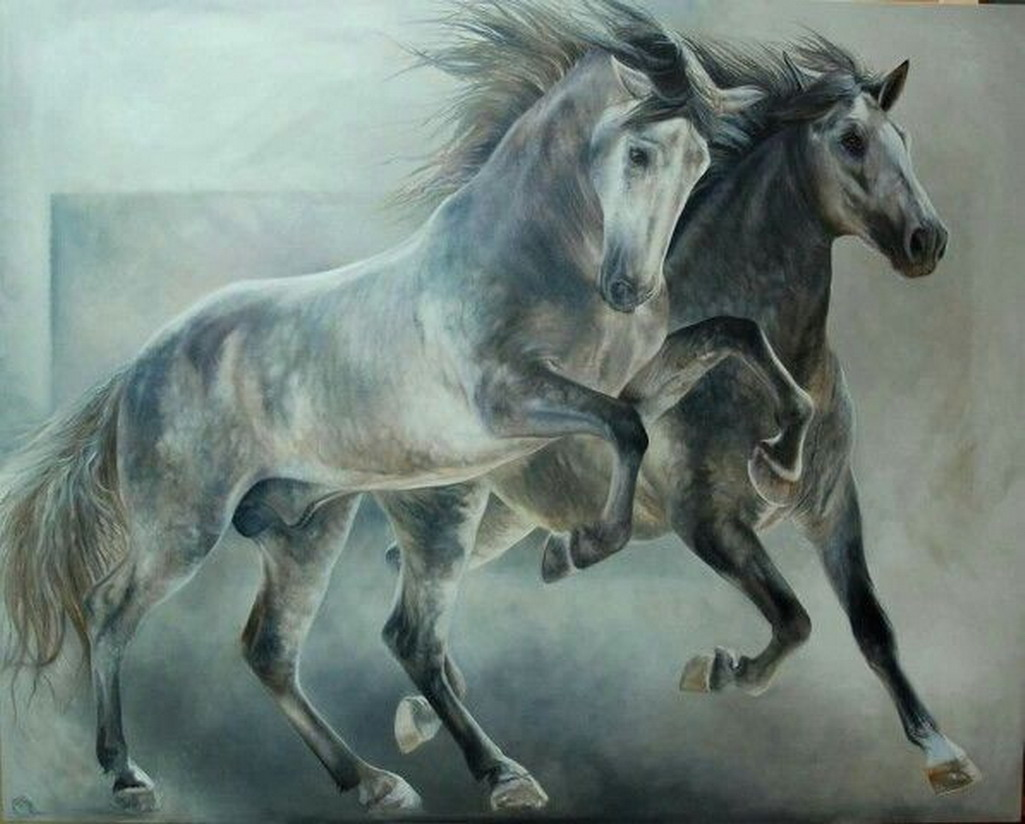 Black And White Paint Horse Drawings